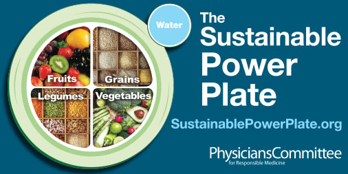 Sustainable Power Plate