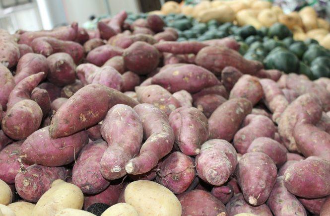 Camote - Sweet Potato
