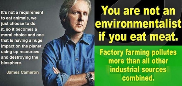James Cameron #govegan