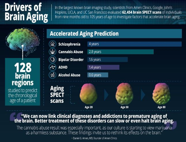Marijuana And Brain Aging